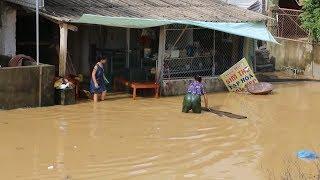 Tin Lũ Mới Nhất: Hơn 100 ngôi nhà tại Nghệ An ngập sâu trong nước lũ