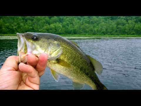 New Jersey Bass Fishing- July 2014 Northern Nj.