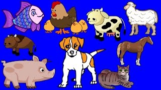 DOMESTIC ANIMALS For Children, Animals Song, Picture Book, Learning & Teaching Video for Toddlers