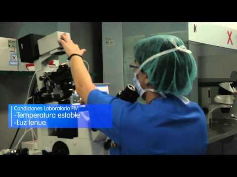 IVI - Ventana al Laboratorio de FIV y Andrología (España, UE, 2014)