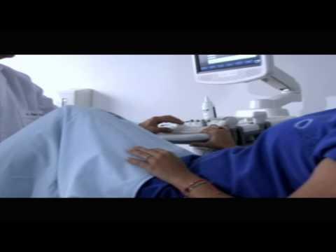 inSer: Salud | Vida | Fertilidad - Problemas de Ovulación