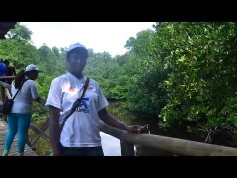 Agencia de Viajes El Orejano: Clientes Universidad de Popayan