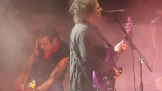 Watch Cure The End Of The World video
