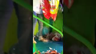 Carnaval oto 2017