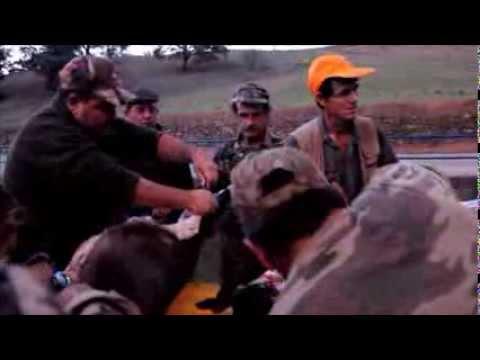 Associa��o de Ca�adores de Santana da Serra -Montaria (10.11.13)