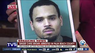 Singer Chris Brown arrested on felony assault charge in Palm Beach County
