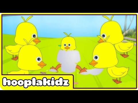 Five Little Ducks   Nursery Rhymes by Hooplakidz
