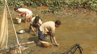 Bangladeshi Fishing 2014  Part 3 Full HD
