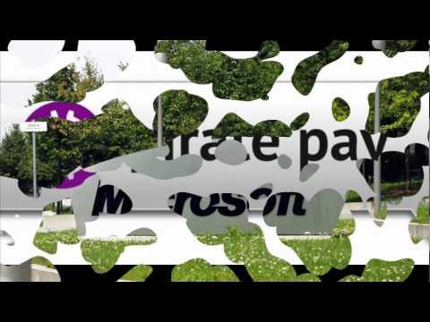 Pirate Pay iniciativa de Microsoft contra el P2P