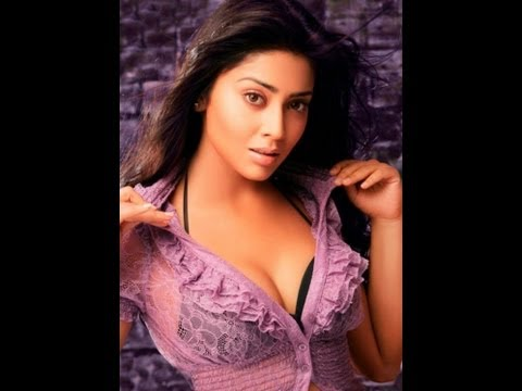 South Actress - Shriya Saran Hot Poses