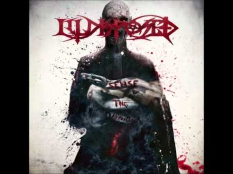 Illdisposed - Sense the Darkness (2012)