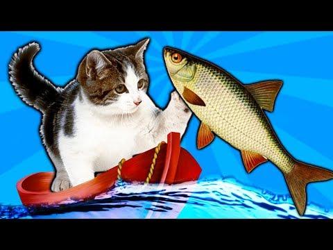 КОТЕНОК РЫБОЛОВ симулятор кошачьей рыбалки видео про маленького котенка как мультик игра для детей