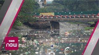 Thực hư làm sạch sông Tô Lịch chỉ trong 3 ngày | VTC Now