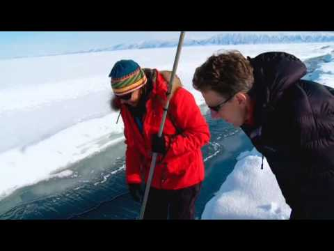 Greenland Ice Melt- Prof. Tim Lenton and Bernice