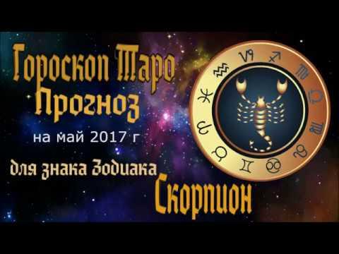 Скорпион  любовный гороскоп на сегодня  1001 ГОРОСКОП