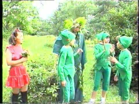 Poveste cu spiridusi Ciresica si spiridusii - Teatrul pentru copii Insira-te Margarite IASI Video