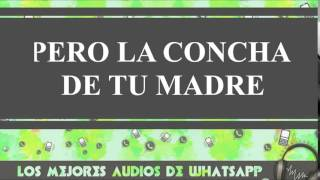 Pero La Concha De Tu Madre - Conversaciones De Whatsapp - Los Mejores Audios Y Videos Whatsapp
