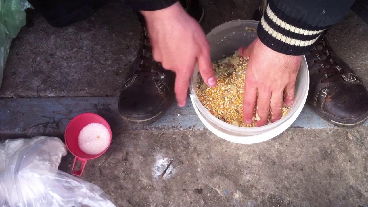 Подкормка на сазана своими руками
