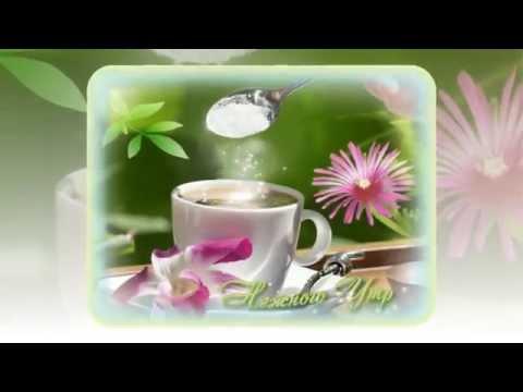 Доброе утро! Хорошего дня!! И много,много хорошего!!!