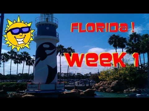 Florida 2013 - Week 1 ! (Holiday Highlights)