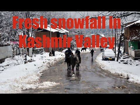 Snow Fall in Betab valley Kashmir December 2012