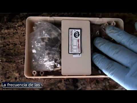 ANTICIMEX ® - Termitas - Tfno 900 828 008