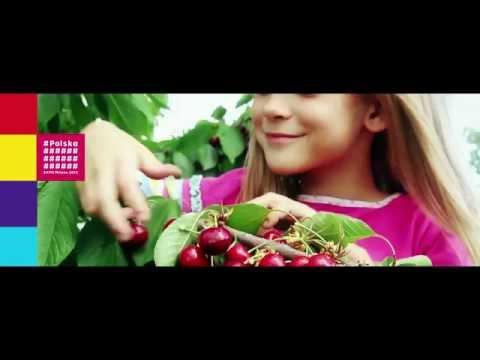 Film Promocyjny O Polskiej żywności Na EXPO 2015 W Mediolanie