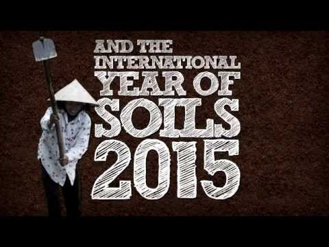 Support World Soil Day and the International Year of Soils 2015