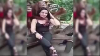 Orangutan kadın turisti taciz etti