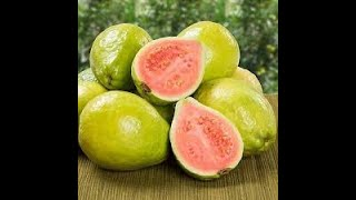 Growing Exotic Fruits in Canada