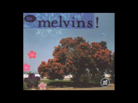 Melvins - Now A Limo