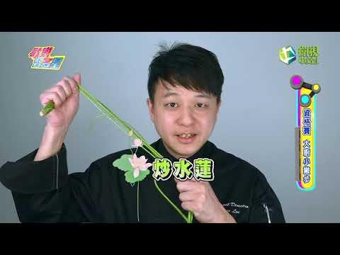 台綜-歡樂智多星