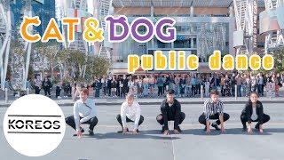 [KPOP IN TXT LA SHOWCASE] TXT 투모로우바이투게더 - Cat & Dog 냥앤멍 Public Dance by Koreos