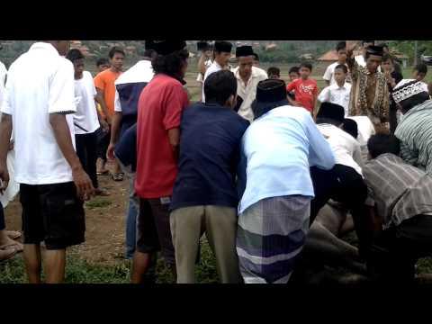 saipul jamil saat qurban kerbau di kota serang thn 2011