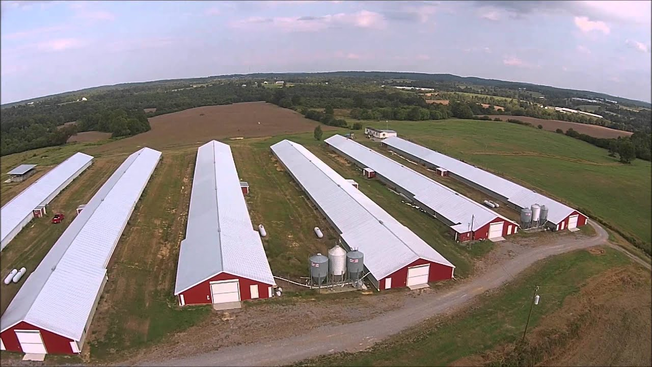 Poultry House For Sale Poultry Farm For Sale Cullman