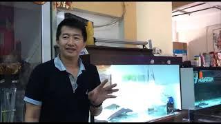 Aquatic Science & Daily Life 2