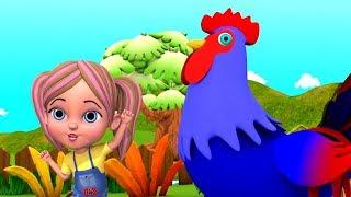Kukdoo Koo   Animals Sounds in Hindi   कुकड़ू कु   Hindi Nursery Songs   Little Treehouse India