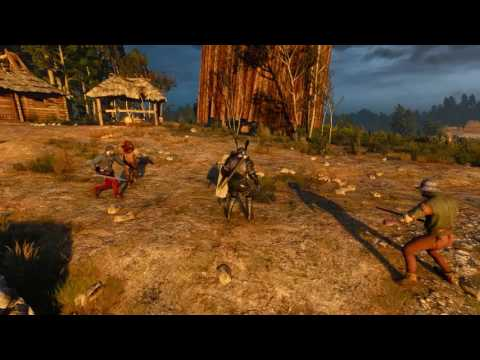 The Witcher 3 - Shields Mod Demo