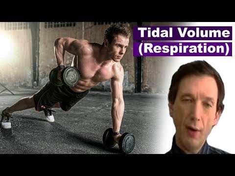 respiratory rate and tidal volume Relationship between heart rate and minute ventilation, tidal volume and respiratory rate during brief and low level exercise.