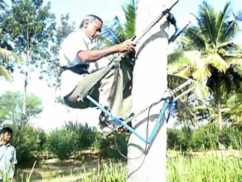 Multi-Tree Climber email: rtechagri@gmail.com Mob: +919944284440