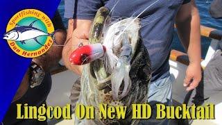Lingcod on the New HD B52 Bucktail Jig | SPORT FISHING