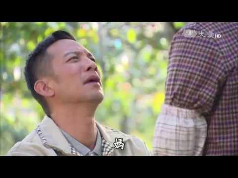 大愛-長情劇展-葡萄藤下的春天-EP 15 end
