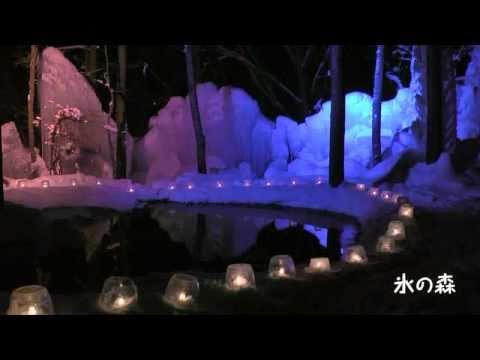高山市 「氷点下の森」 ~氷祭り~