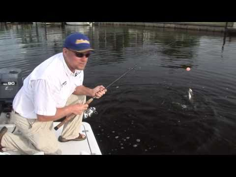 Great Tarpon Fishing in Boca Grande Cape Coral Ft. Myers! Chew On This