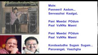 Thein sindhudhe Video  Karaoke for Male Singers by HamsaPriya