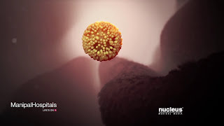 Introduction To Stem Cells – Manipal Hospital