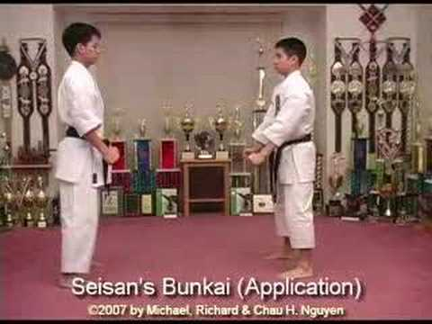Isshinryu Karate and Kobudo DVD Series Image 1