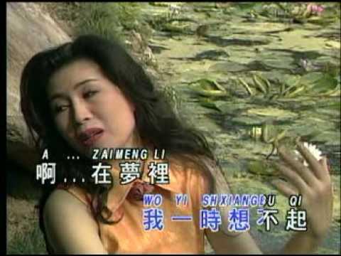 甜蜜蜜  Tian mi mi ( Lin su cien )