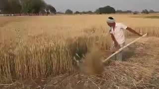 What an idea of agriculture technology