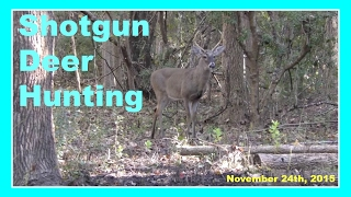 🦌 Shotgun Deer Hunting - November 24th, 2015 🦌